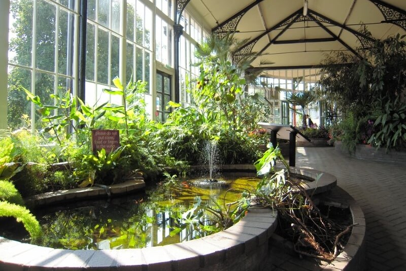 Winter conservatory in the Pavilion Gardens