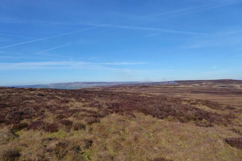 View of a Dark Peak moorland in the Peak District. Image courtesy of Ali Quas-Cohen.