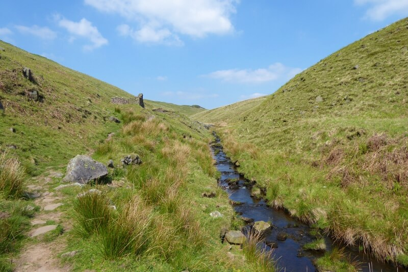 Stream in valley. Image courtesy of Ali Quas-Cohen.