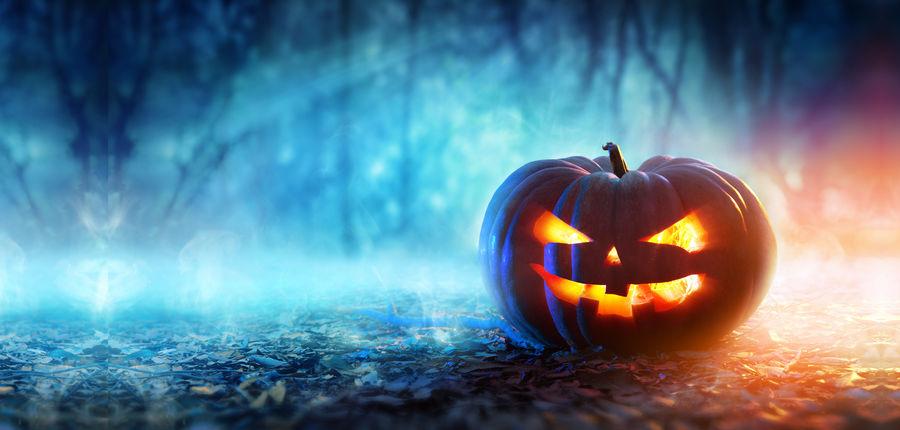 Half-term, Halloween and Fireworks